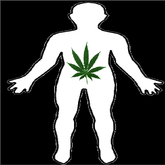 how to get cannabis out of your system uk