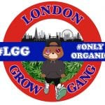 ISMOKE Interviews London Grow Gang