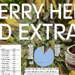 Cherry Hemp Extract Review
