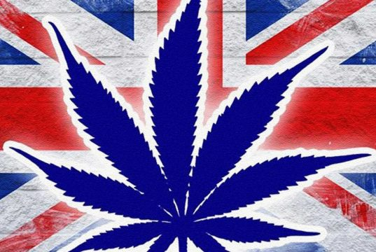 British Cannabis Prices