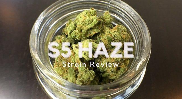 S5 Haze Review