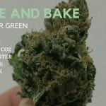 Wake and Bake With Tyler Green [Episode 7]