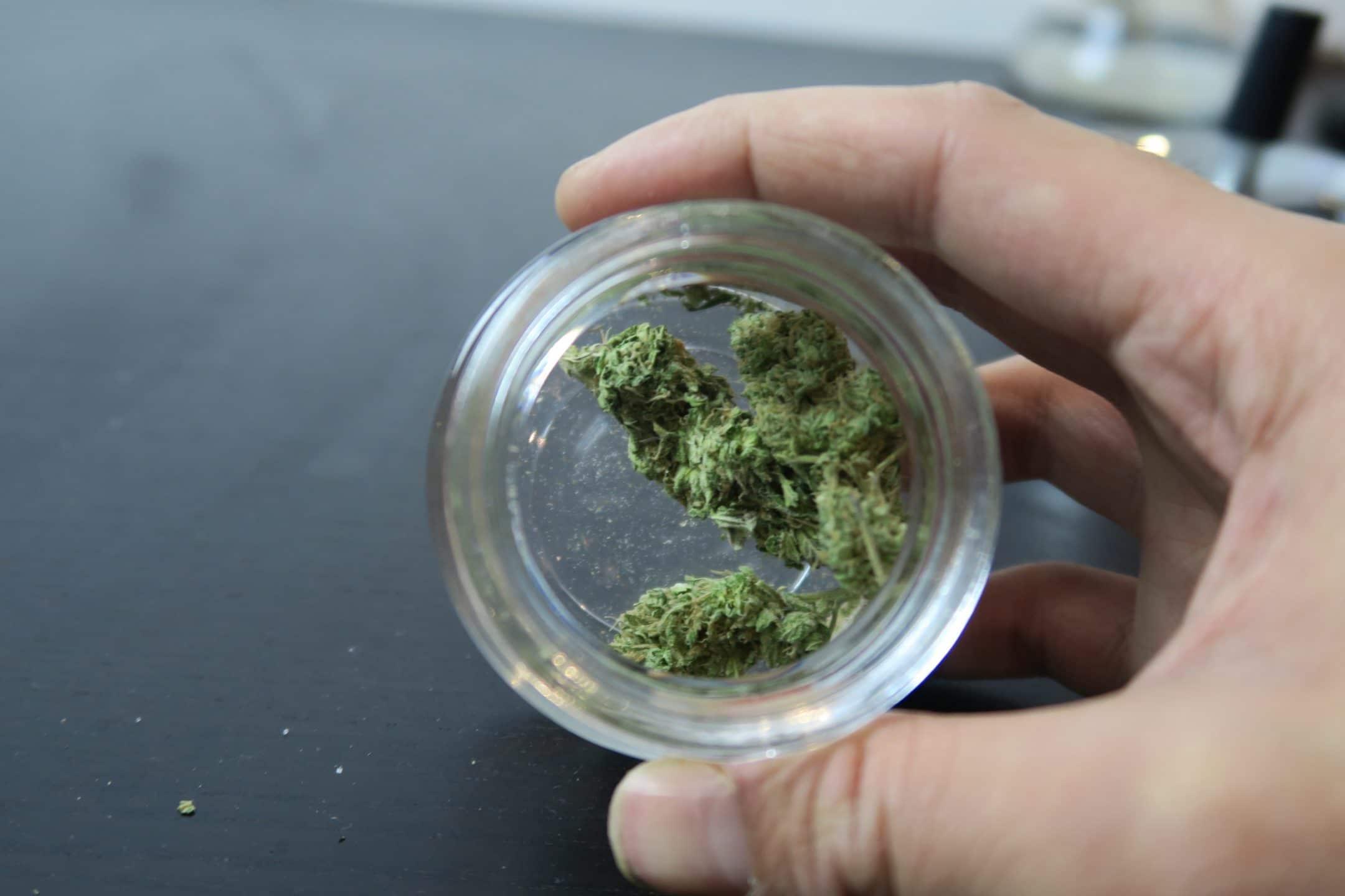 B29 Cannabis