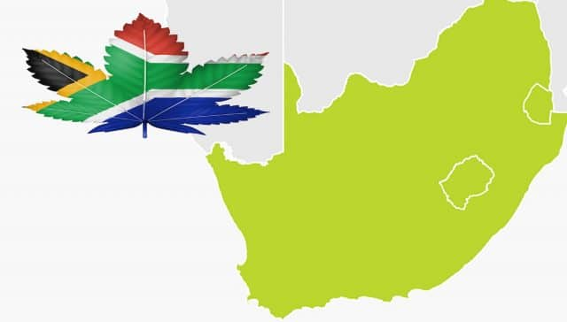 Cannabis in South Africa
