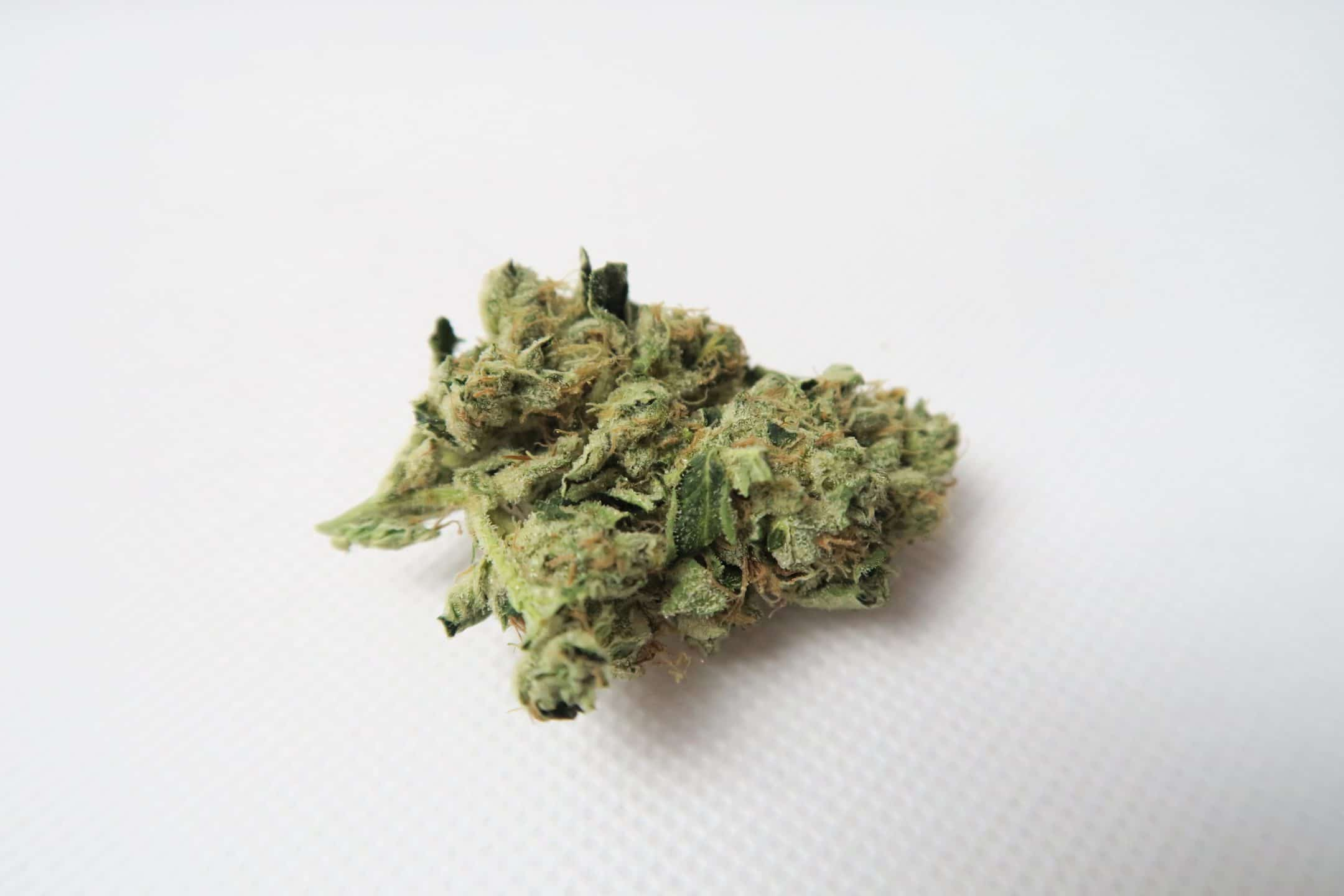 Headbanger, Headbanger Strain Review