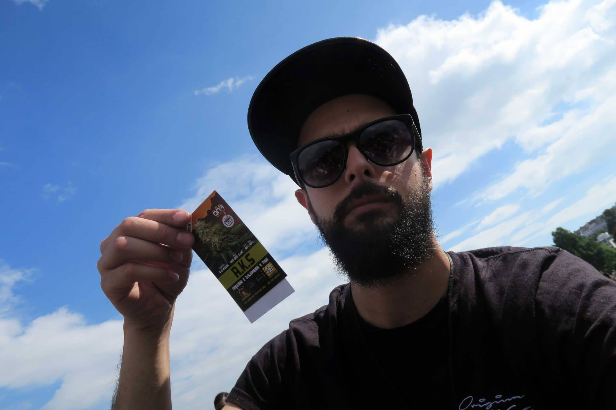 Green Pride 2017, Brighton Cannabis Social Club : Green Pride 2017