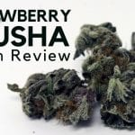 Strawberry Crusha Weed Report