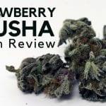 Strawberry Crusha Weed Report