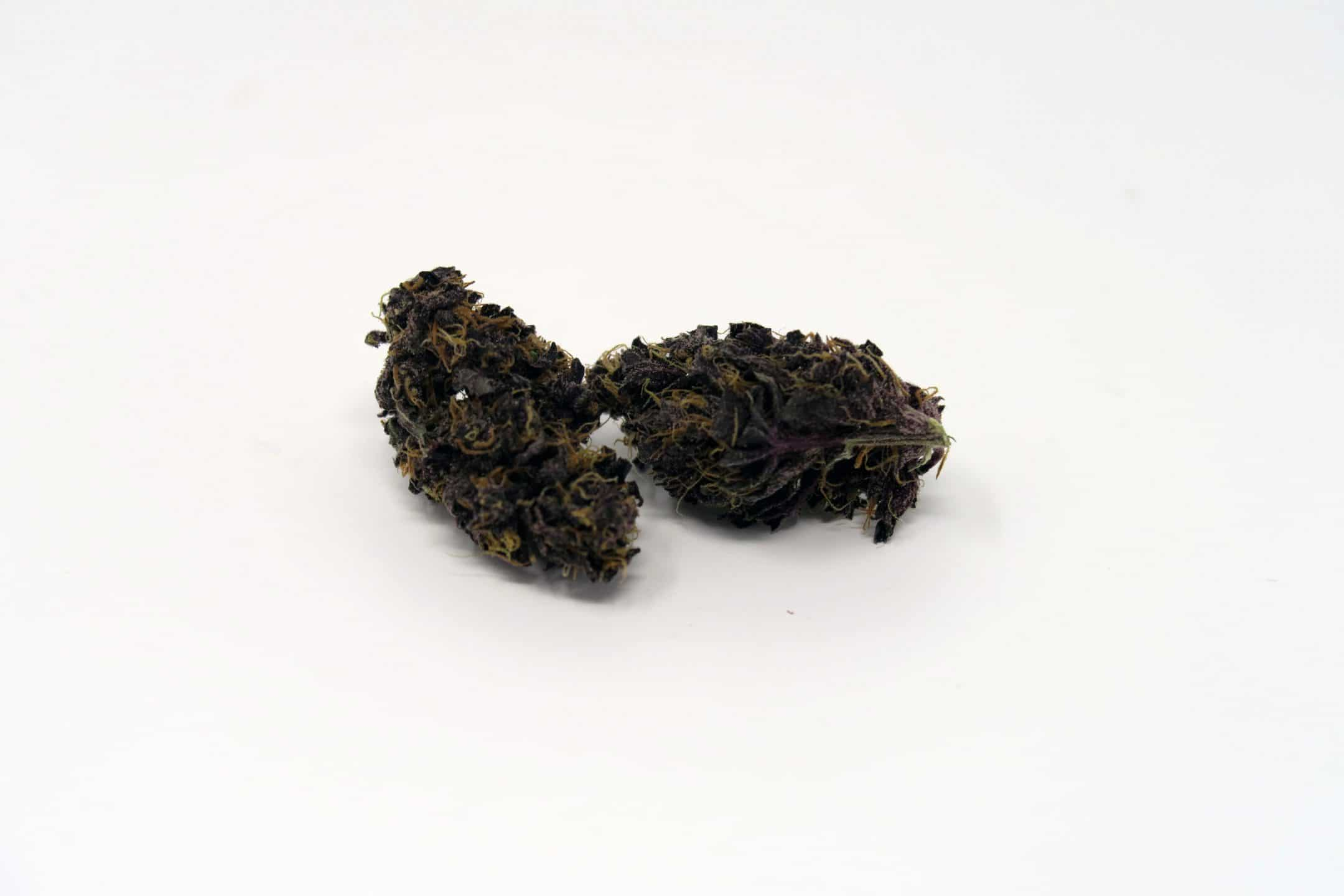 blackberry weed - photo #29