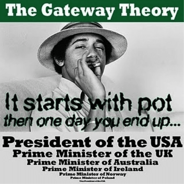 The gateway theory