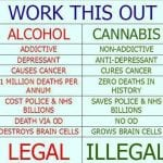 Cannabis vs. Alcohol