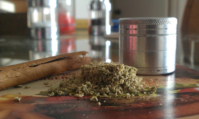 , Should Cannabis Be Legalised?