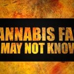 5 Cannabis Facts You May Not Know 02