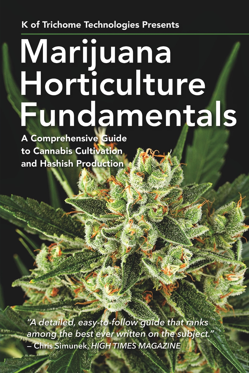 Cannabis Cloning, Cannabis Cloning – Marijunana Fundamentals
