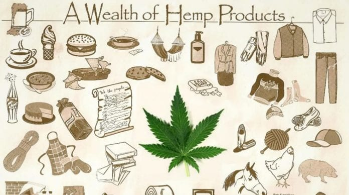 The Many Uses of Hemp