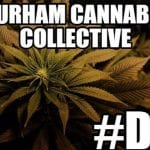 Add these Upcoming Cannabis Events to Your Diary: Durham & ..