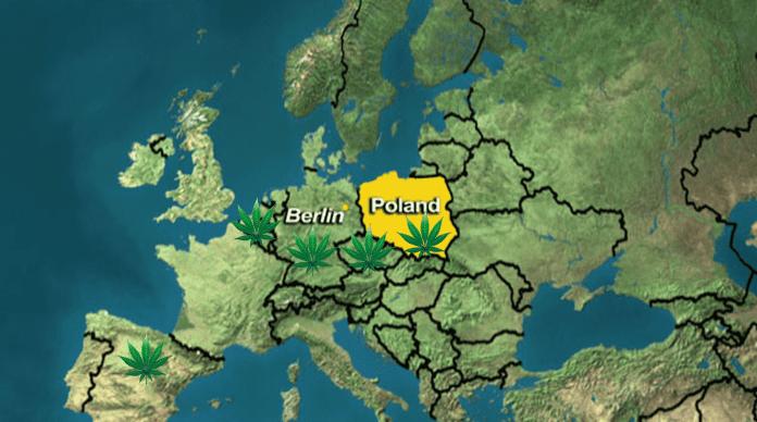 Europe Cannabis Laws in Poland