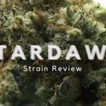 Stardawg Strain Review