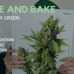 Spannabis Posters, Casey Jones + More : Wake and Bake ..