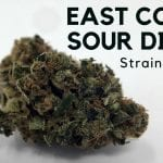 East Coast Sour Diesel Cannabis Strain Information & Review