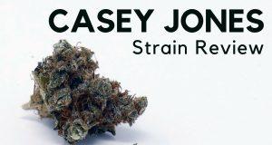 Casey Jones ISMOKE Review