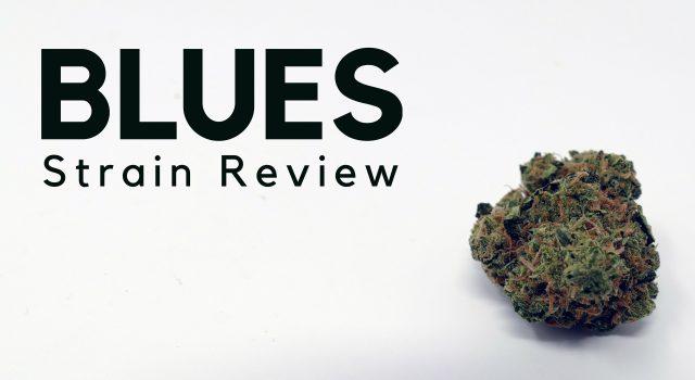 Blues Cannabis Strain Review