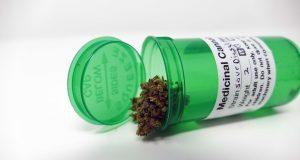 Sour Diesel Haze Cannabis Strain