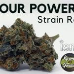 Sour Power OG Cannabis Strain Information & Review
