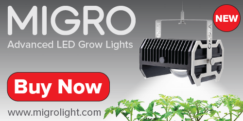 MIGRO Advanced LED lights for home growers